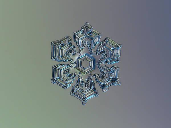 Snowflake Photo - Silver Foil Art Print