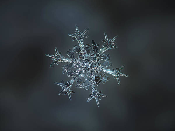 Photograph - Snowflake Photo - Starlight II by Alexey Kljatov