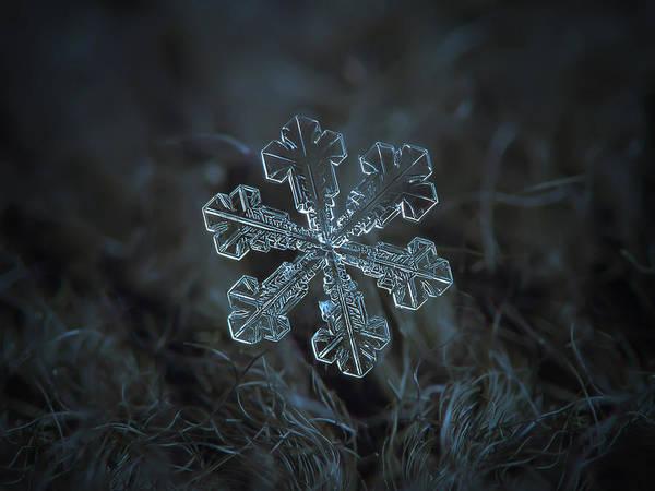 Snowflake Photo - Vega Art Print