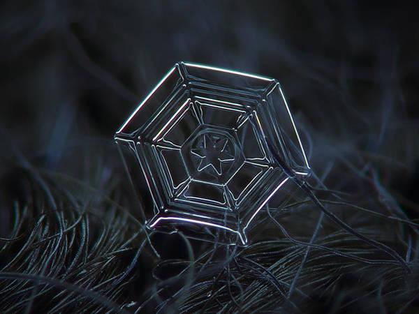 Photograph - Snowflake Photo - Web by Alexey Kljatov