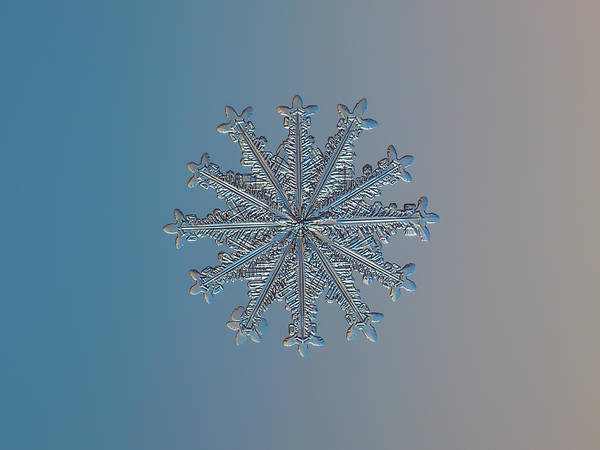 Photograph - Snowflake Photo - Wheel Of Time by Alexey Kljatov