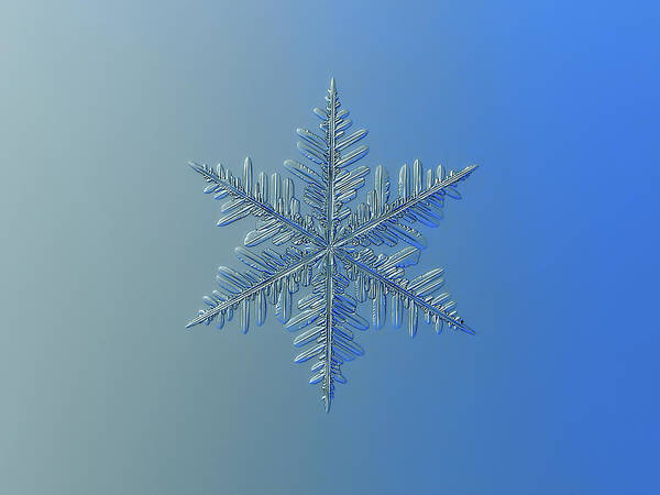 Photograph - Snowflake Photo - Winter Is Coming by Alexey Kljatov