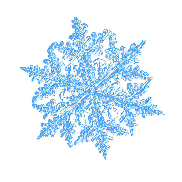 Digital Art - Snowflake Vector - 2017-02-13_3 White by Alexey Kljatov