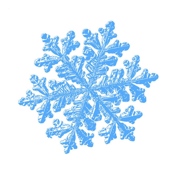 Digital Art - Snowflake Vector - Hyperion White by Alexey Kljatov