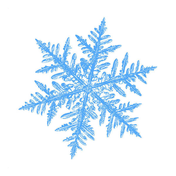 Digital Art - Snowflake Vector - Silverware White by Alexey Kljatov