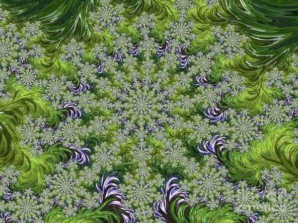 Digital Art - Snowflakes by Elaine Teague