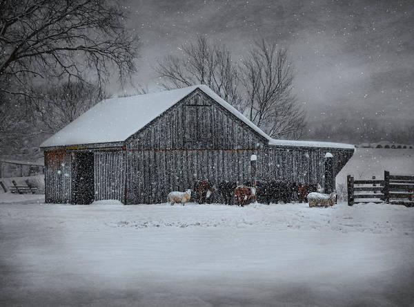 Snowflakes On The Farm Art Print