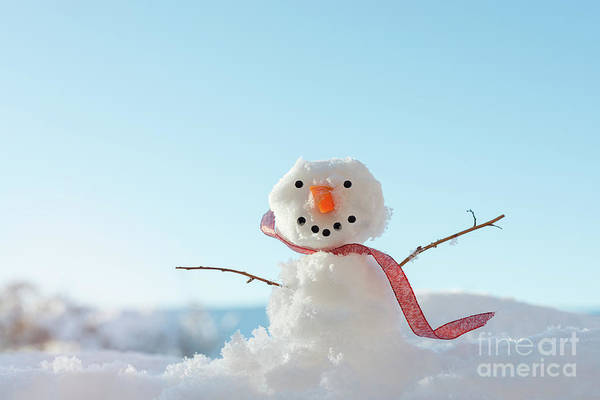 Wall Art - Photograph - Snowman In Landscape by Amanda Elwell