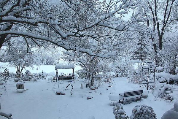 Photograph - Snowplosion by Allen Nice-Webb