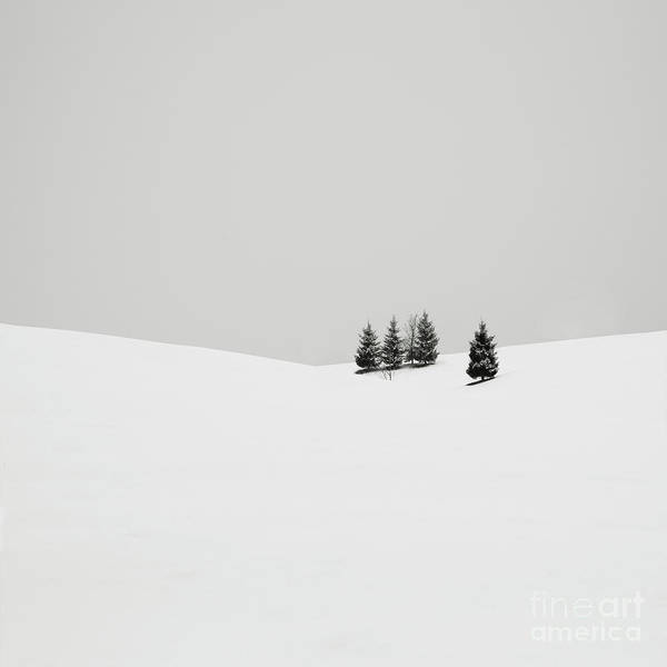Contemporary Photograph - Snowscapes   Almost There by Ronny Behnert