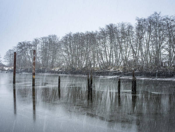 Photograph - Snowstorm Along The River by Robert Potts