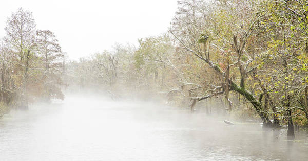 Photograph - Snowy Bayou by Andy Crawford