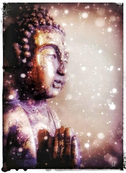 Mixed Media - Snowy Buddha by Christine Paris