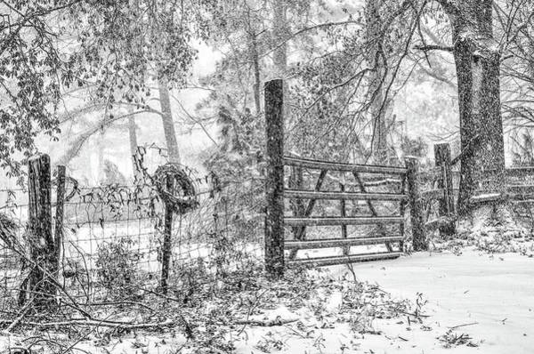 Photograph - Snowy Cattle Gate by Scott Hansen