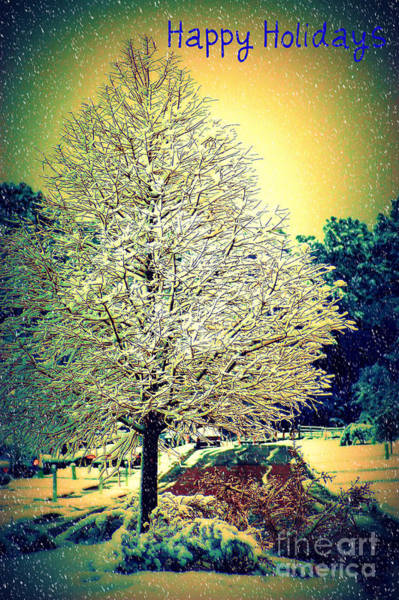 Photograph - Snowy Days by Donna Bentley