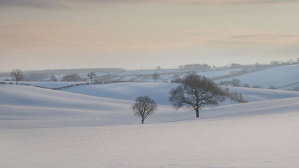 Early Winter Wall Art - Photograph - Fields Of White by Chris Dale