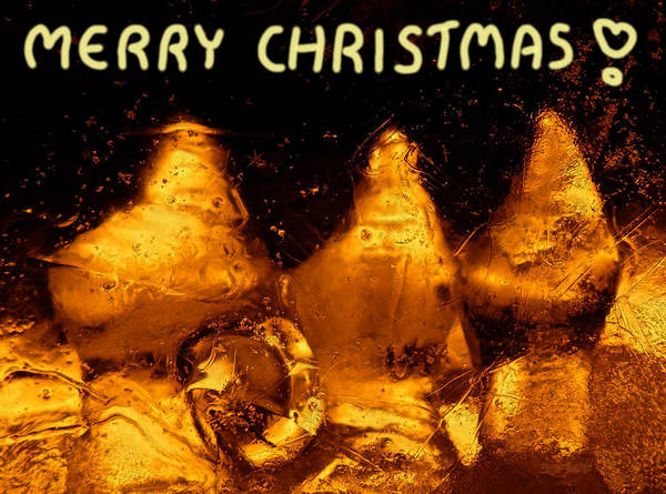 Photograph - Snowy Ice Bottles - Christmas Greetings by Sami Tiainen