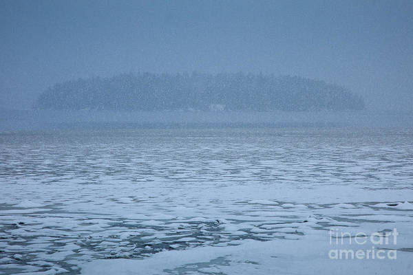 Wall Art - Photograph - Snowy Island by Susan Cole Kelly