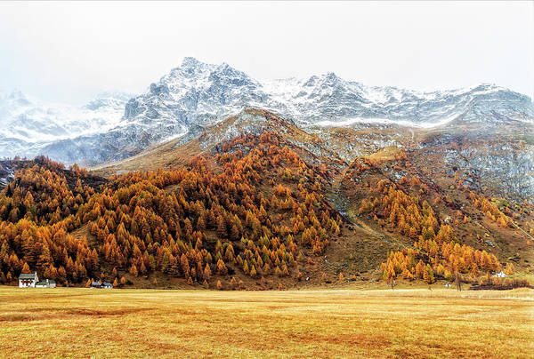 Photograph - Snowy Landscape With Fall Colors by Roberto Pagani