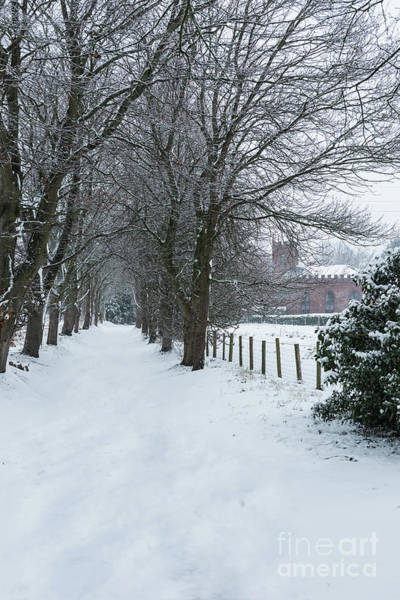 Wall Art - Photograph - Snowy Lane Leading To A Church by Amanda Elwell