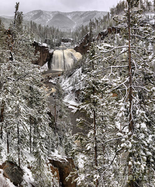 Photograph - Snowy Morning At Gibbon Falls by Adam Jewell