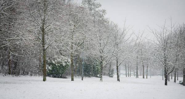 Photograph - Snowy Morning by Raelene Goddard