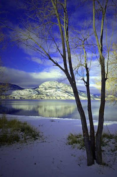 Photograph - Snowy Mountains Reflected In Okanagan Lake by Tara Turner