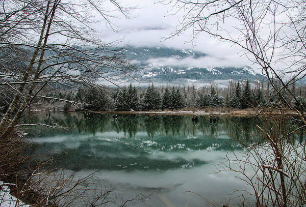 Photograph - Snowy Reflection by Perggals - Stacey Turner