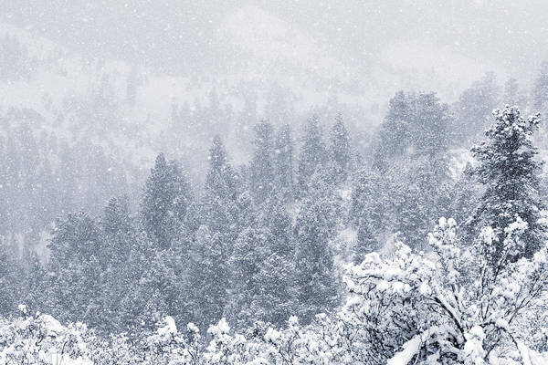 Photograph - Snowy Ridge In The Pike National Forest by Steve Krull