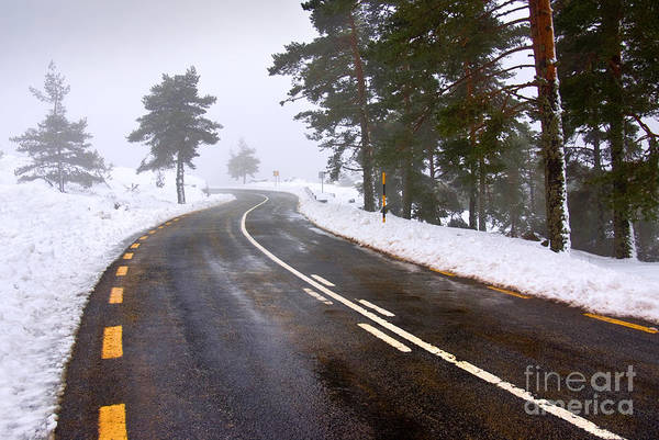 Difficult Photograph - Snowy Road by Carlos Caetano