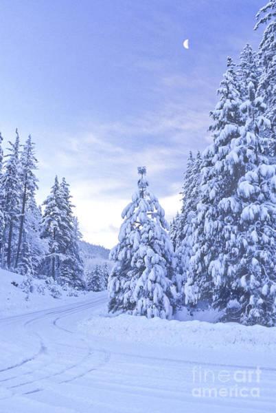 Photograph - Snowy Road, Mt. Shasta by Ellen and Richard Thane