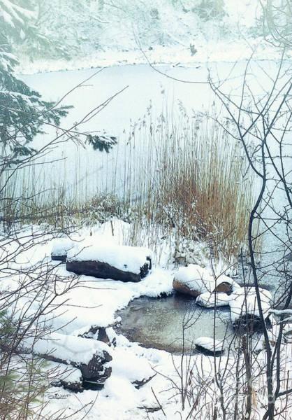 Photograph - Snowy Shore by Jutta Maria Pusl
