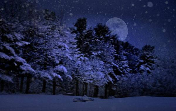 Photograph - Snowy, Snowy Night by Phyllis Meinke