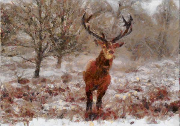 Digital Art - Snowy Stag by Charmaine Zoe