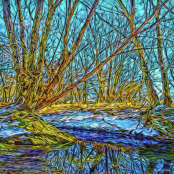 Digital Art - Snowy Stream Reflections by Joel Bruce Wallach