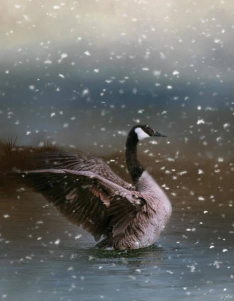 Photograph - Snowy Swim by Jai Johnson