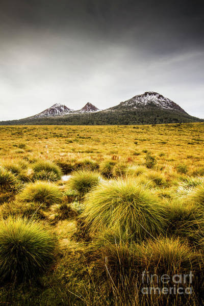 Dark Green Wall Art - Photograph - Snowy Tasmania Mountain Top by Jorgo Photography - Wall Art Gallery