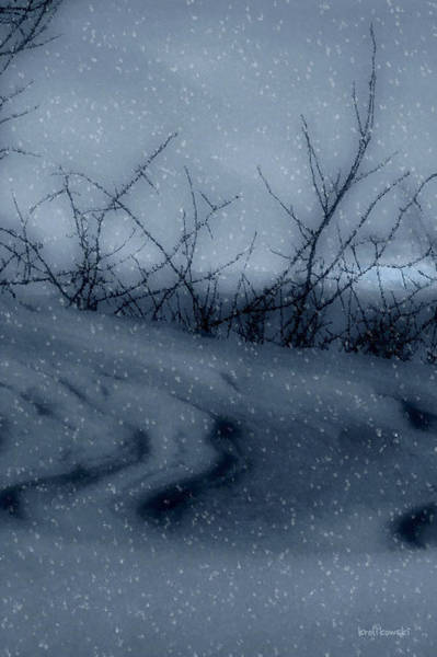 Wall Art - Photograph - Snowy Tranquility by Kenneth Krolikowski