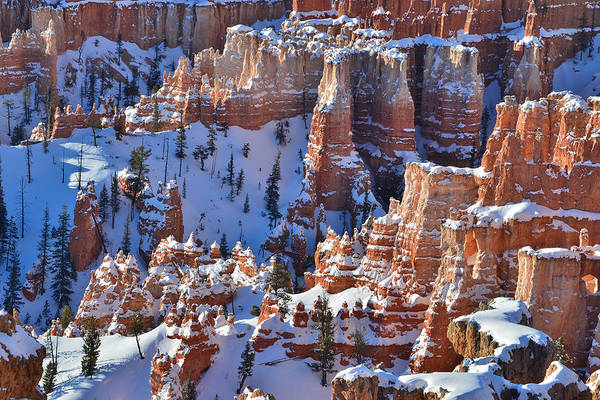 Photograph - Snowy Turrets by Ray Mathis