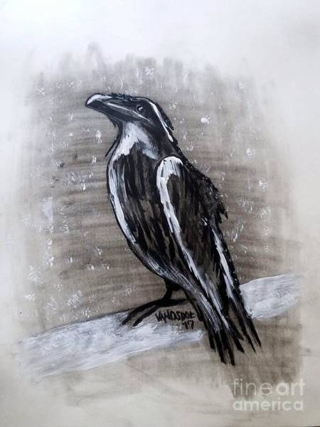 Magpies Drawing -  Snowy Winter Storm Crow by Scott D Van Osdol