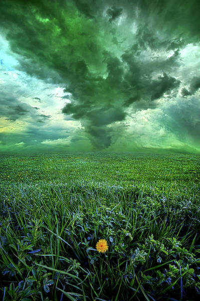 Photograph - So Do Not Fear For I Am Always With You by Phil Koch