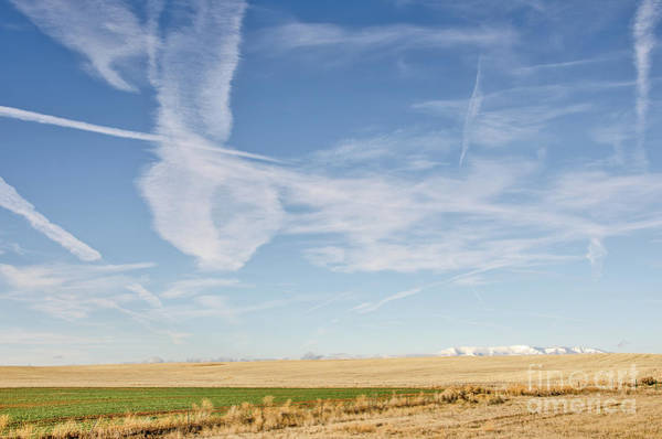 Photograph - So Many Clouds And Contrails by Sue Smith