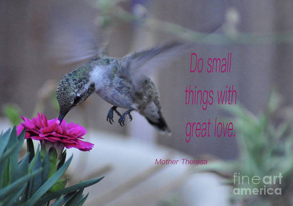 Wall Art - Photograph - Do Small Things With Great Love by Debby Pueschel
