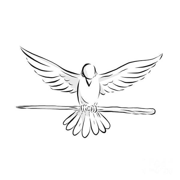 Wall Art - Digital Art - Soaring Dove Clutching Staff Front Drawing by Aloysius Patrimonio