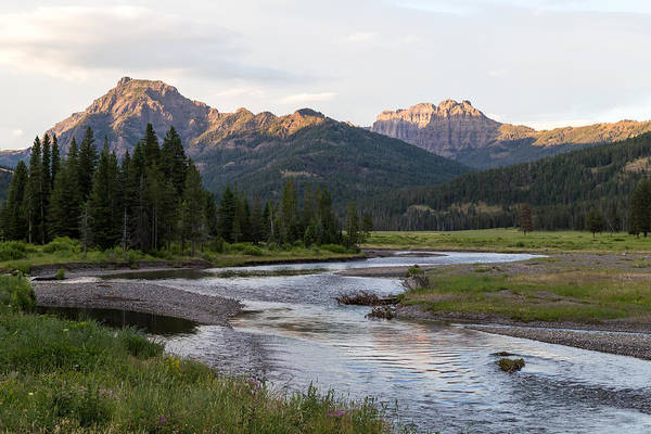 Photograph - Soda Butte Creek by Michael Chatt
