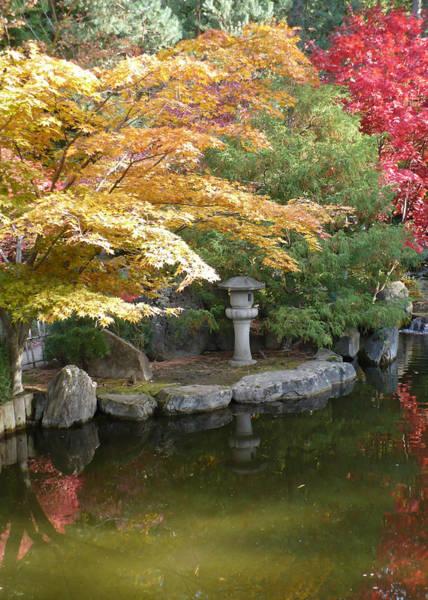 Photograph - Soft Autumn Pond by Carol Groenen