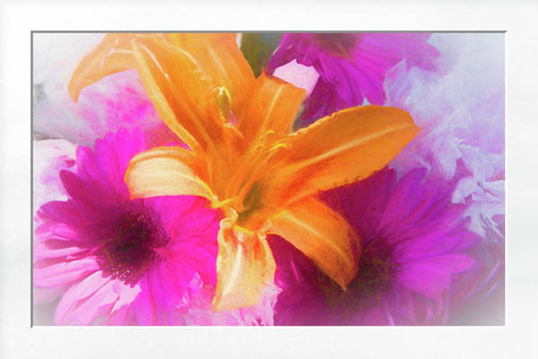 Photograph - Soft Day Lily by Natalie Rotman Cote