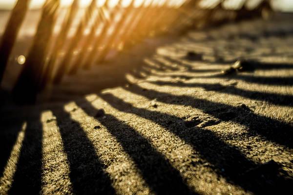 Photograph - Soft Focus Sun Rise Though Dunes Fence by Sven Brogren