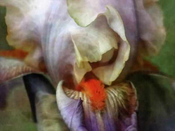 Photograph - Soft Folds 1288 Idp_22 by Steven Ward