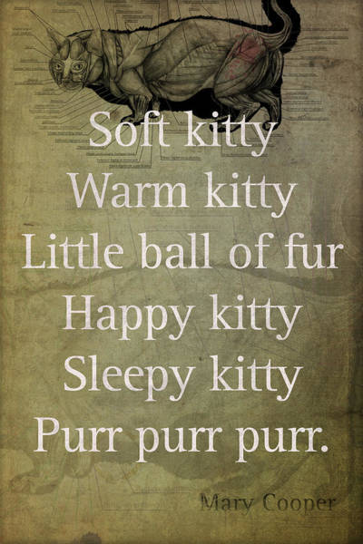 Soft Kitty Warm Kitty Poem Quotation Big Bang Theory Inspired Sheldon Cooper Mother On Worn Canvas Art Print